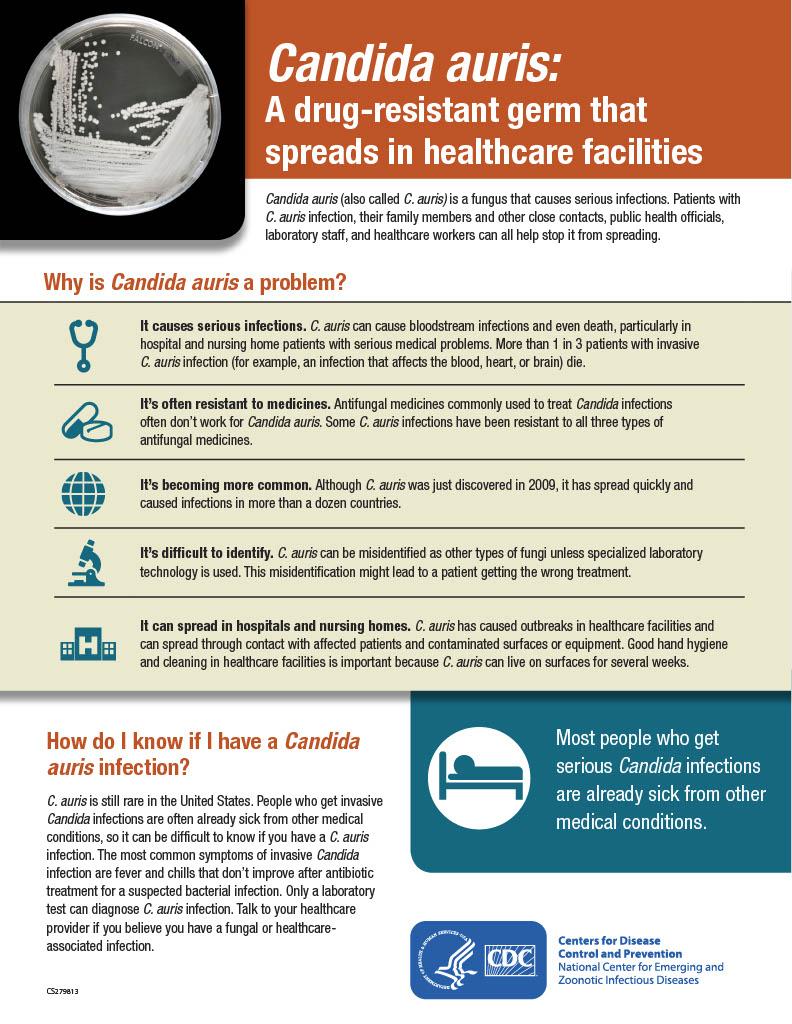 CDC Fact Sheet on Candida Auris